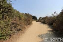 Beach 10-3.jpg