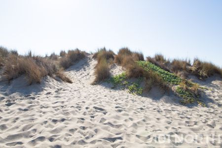 Beach 12-124.jpg