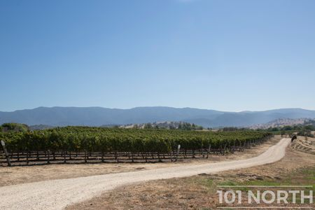 Winery 11-24.jpg