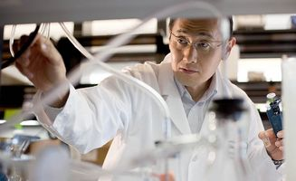stem cell scientist who is a real rock star