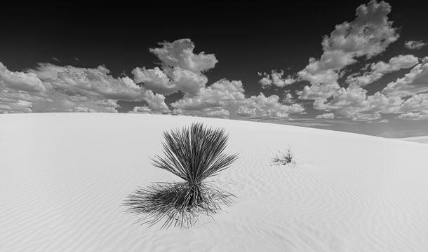 southwesttrip1_whitesands1_sRGB_2880x1700_72ppi.jpg