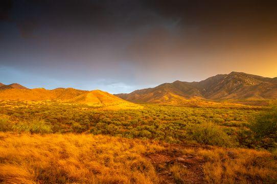 landscapesandnature22_santaritas1_sRGB_2560x1700_72ppi.jpg