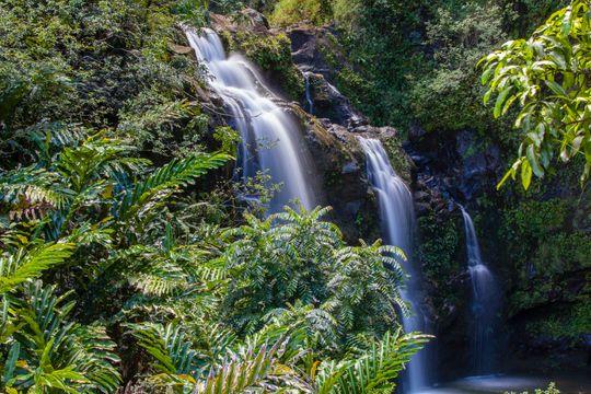landscapesandnature12_hawaii3_sRGB_1800x1200_72ppi 2.jpg