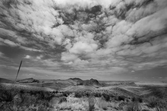 landscapesandnature1_bigbend1_bw_1800x1200_72ppi.jpg
