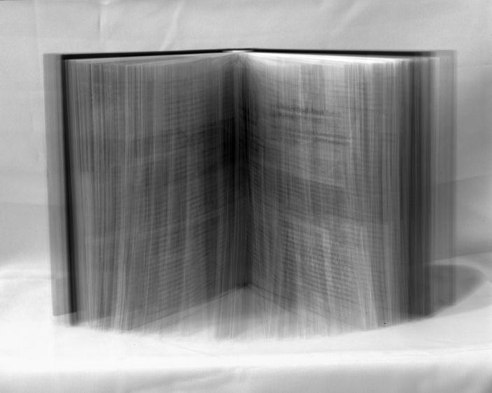 White Book (2010)