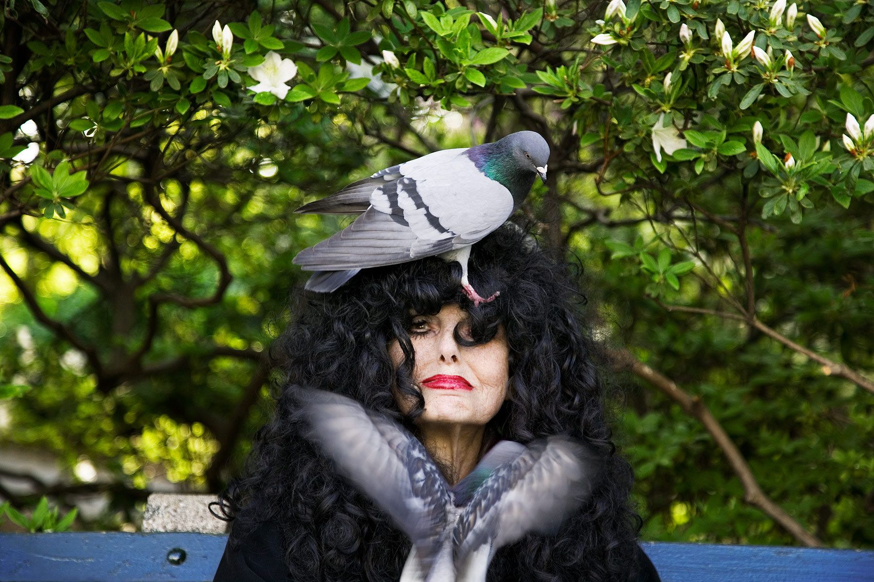 1central_park_pigeon_lady_