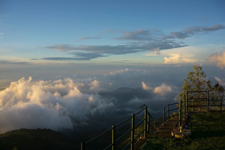 cloud-forest.jpg