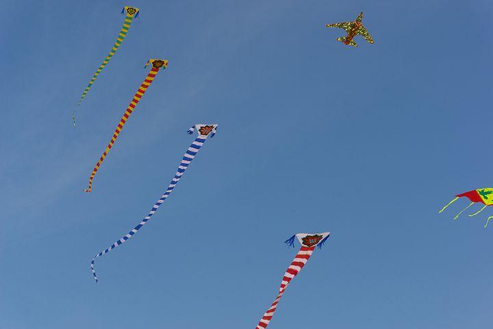 kites.jpg