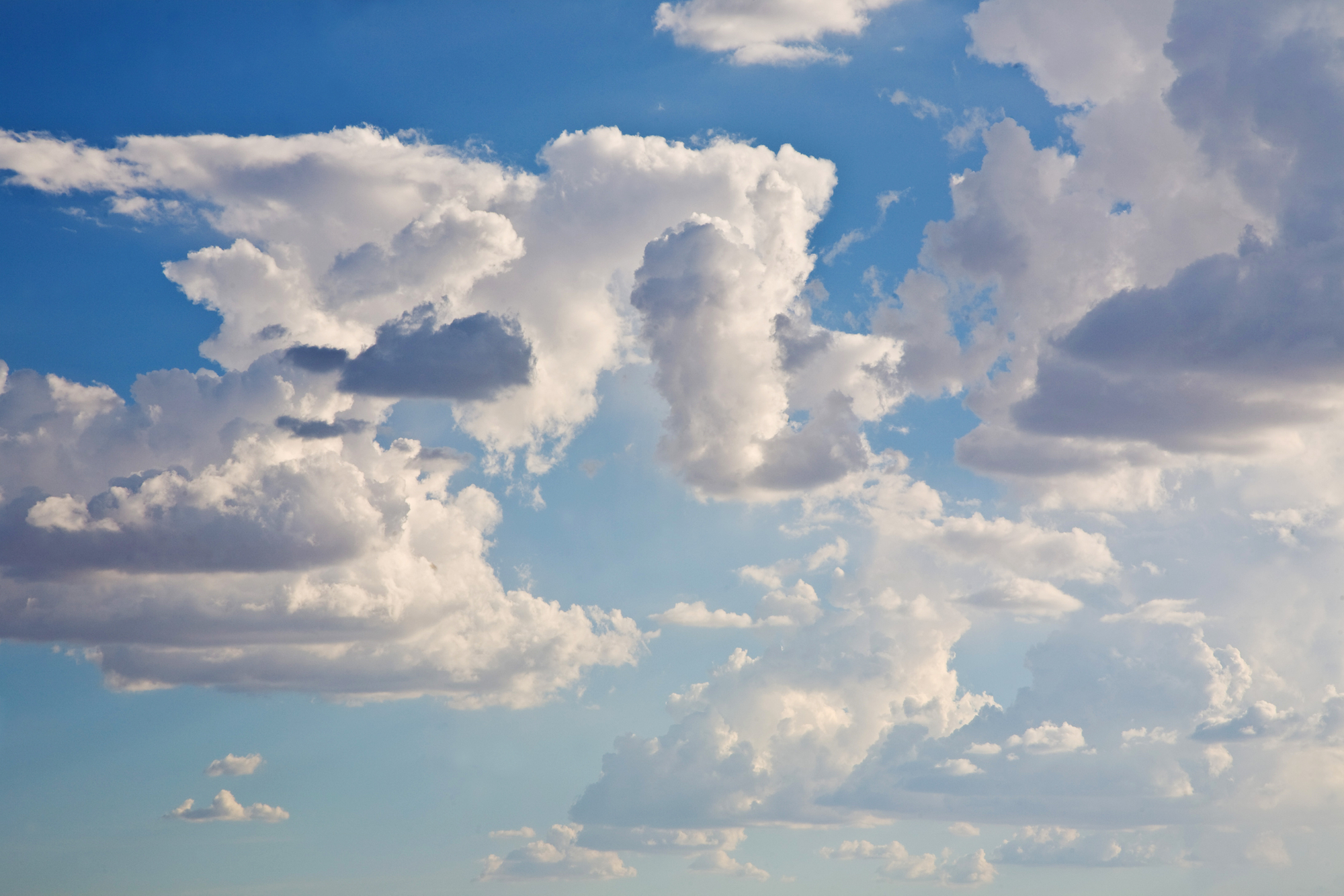 In_the_Clouds.jpg