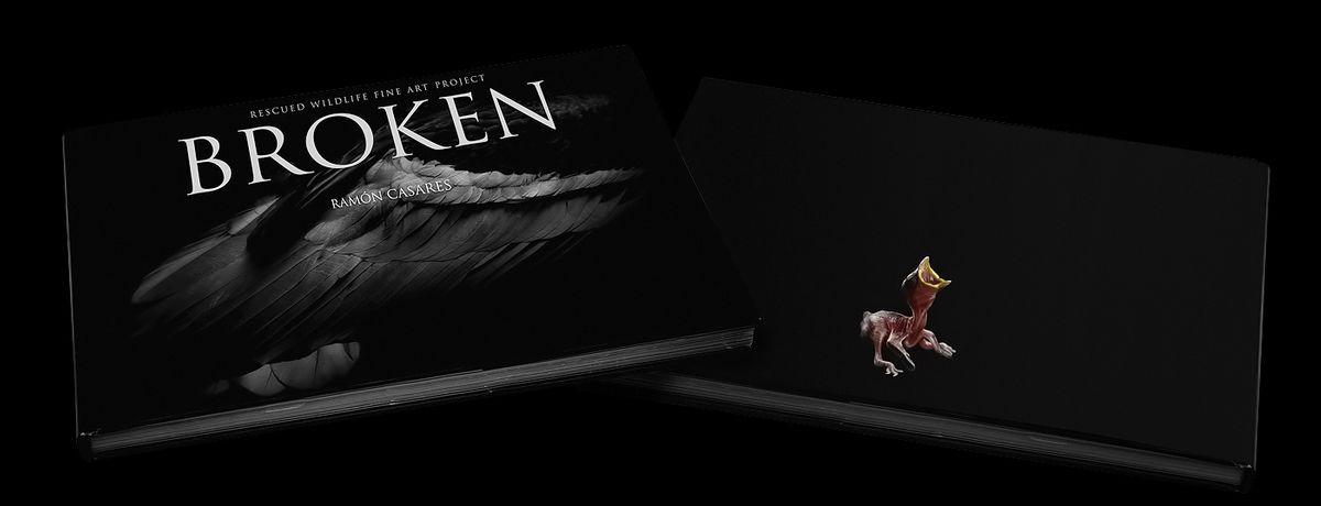 broken cover livebooks web ok.jpg