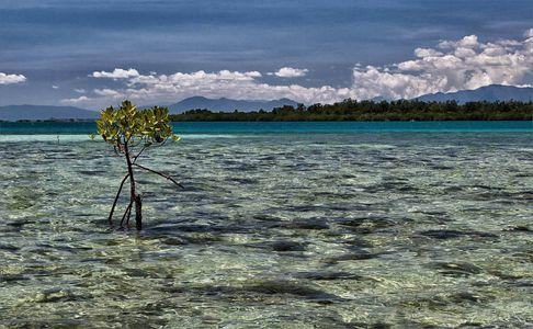 Beach island in Philippine