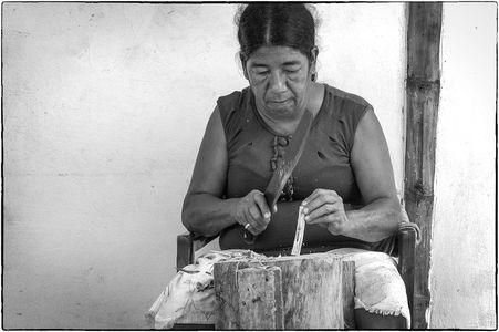 Palo Santo worker    Ecuador