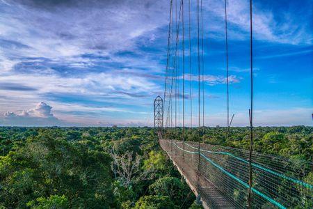 Ecuador  Amazon Jungle