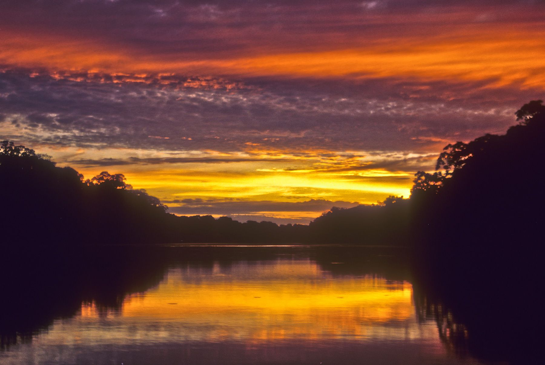 Amazon Sunrise, Peru