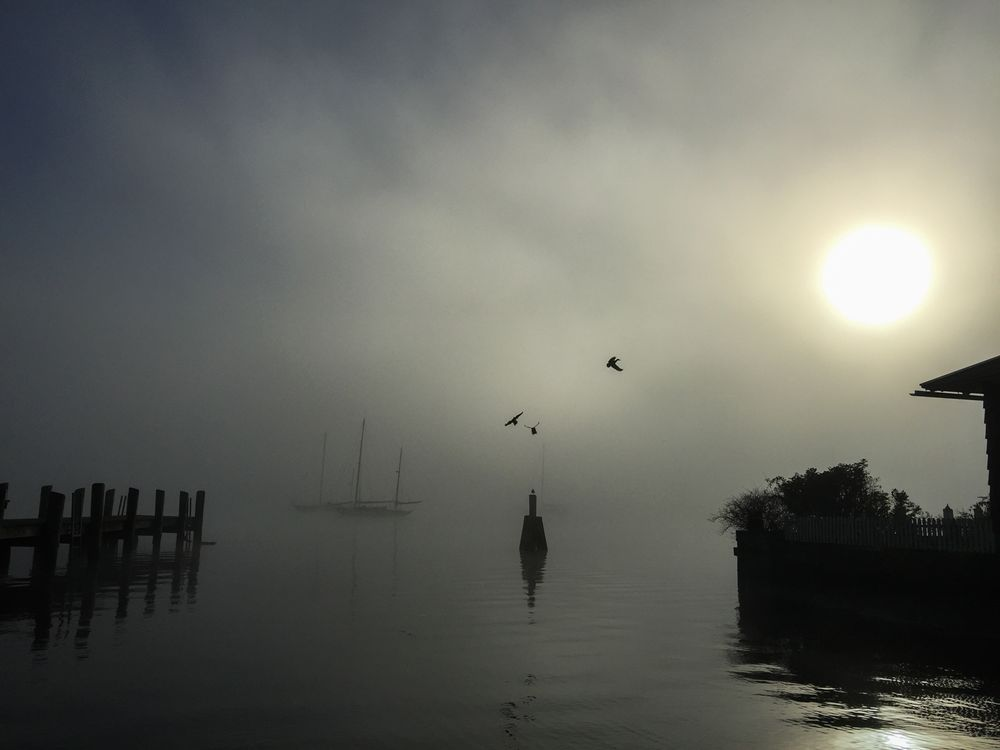 Misty Dock Essex CT