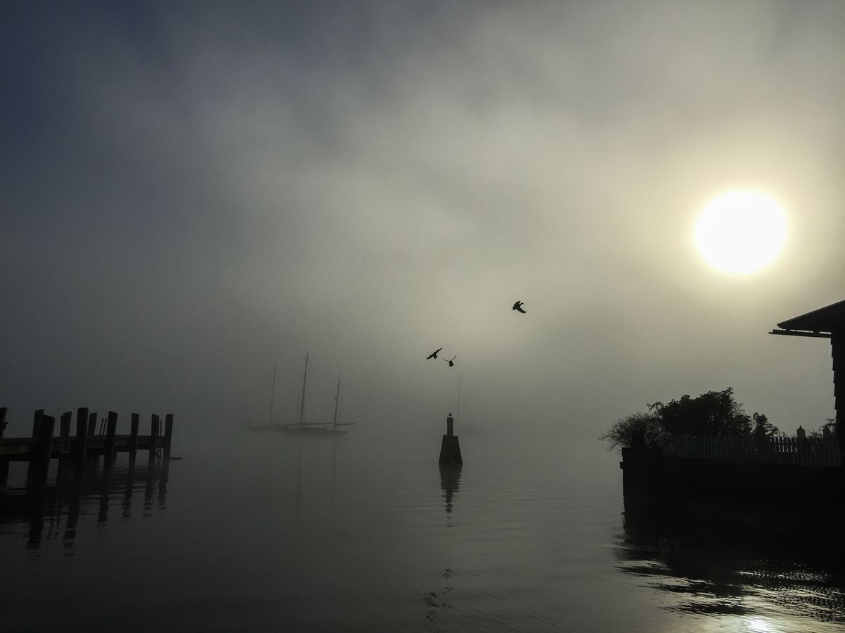 Misty Dock Essex CT
