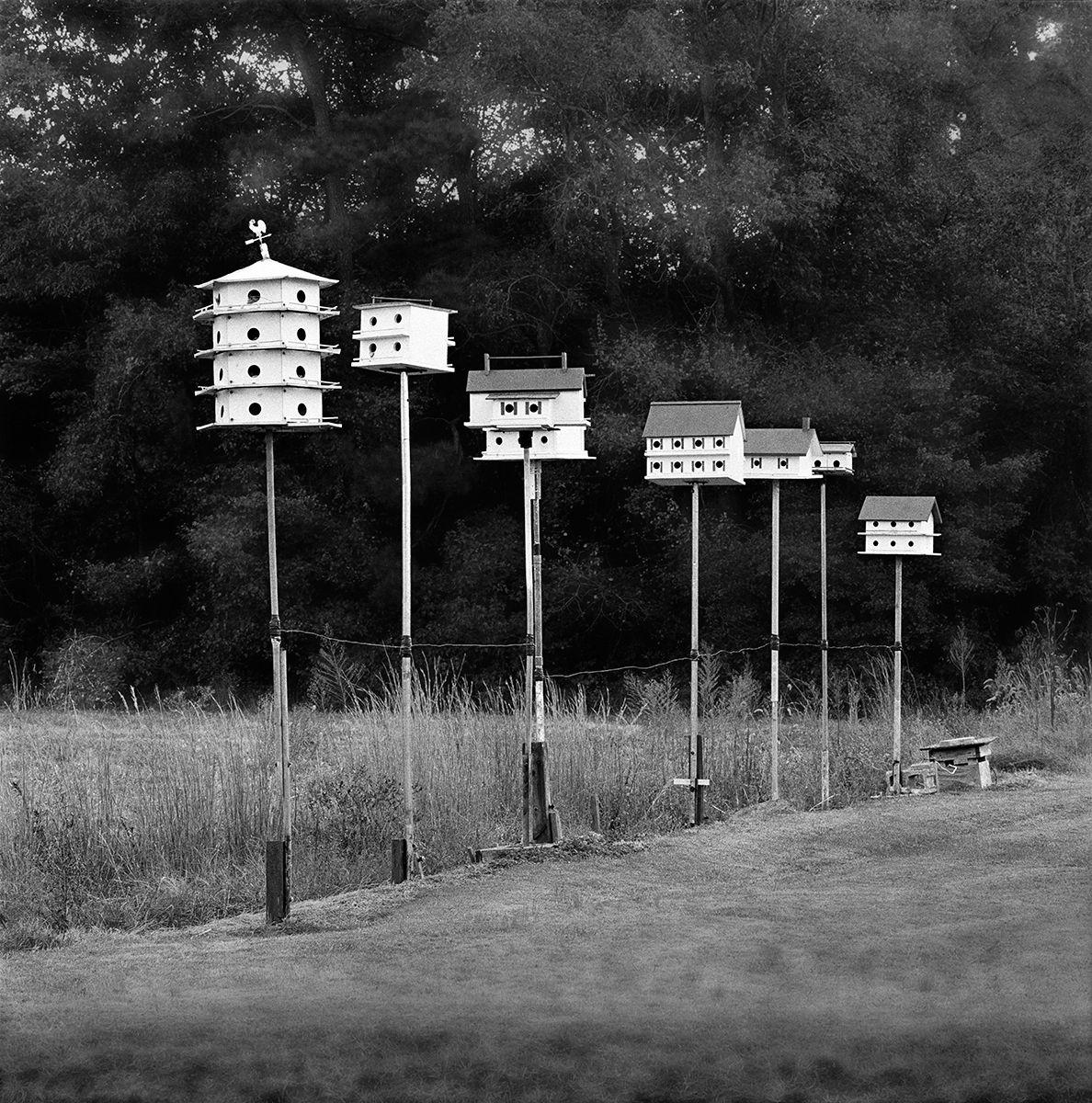 Birdhouse Condos Good copy.jpg