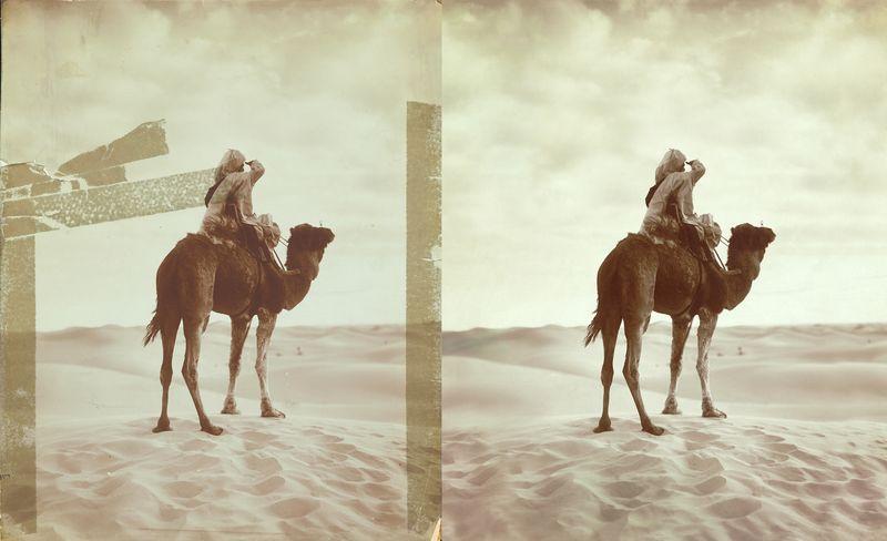 Orientalist Combined.jpg