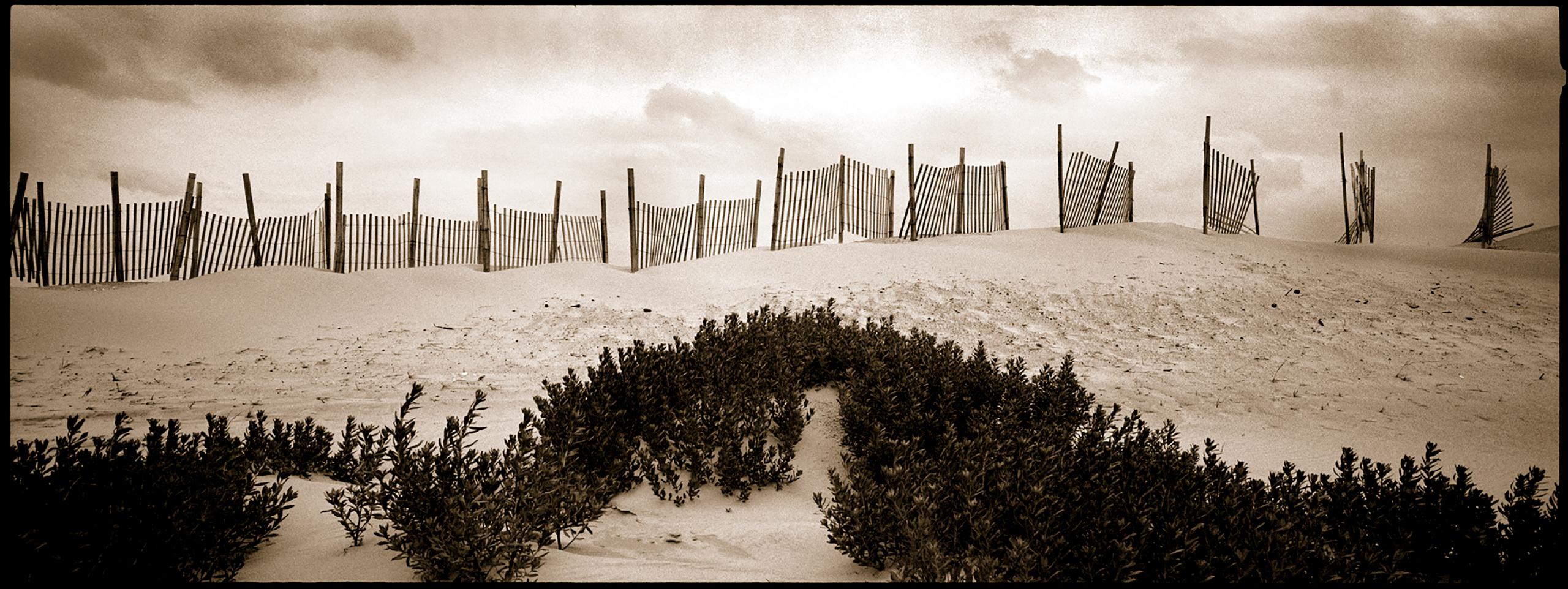 Broken-Fence-Duotone.srgb.jpg
