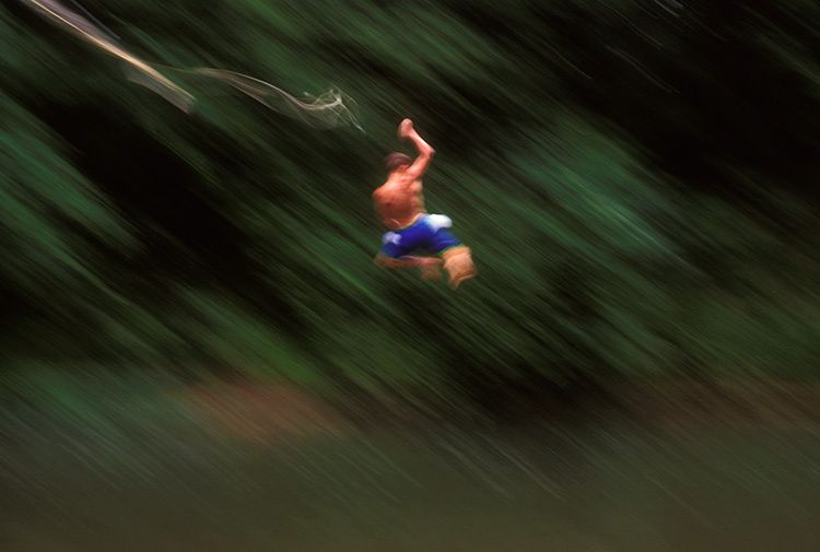 Boy on Rope Swing