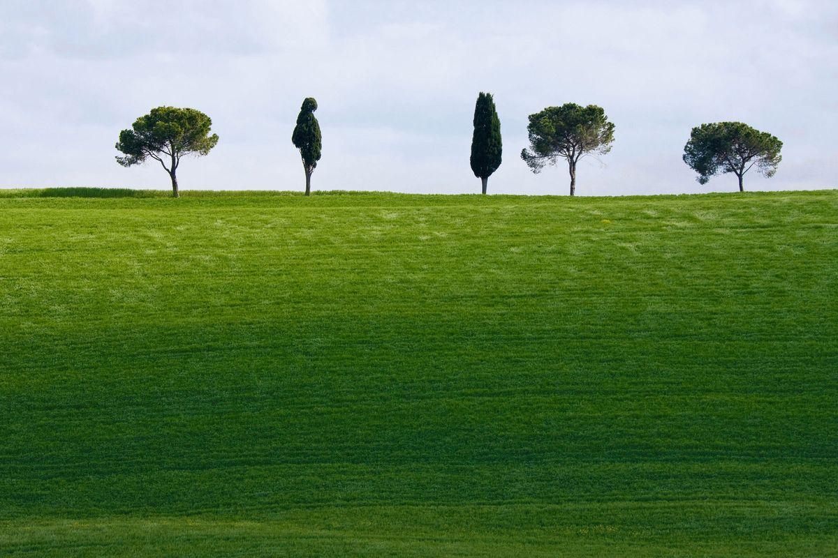 1tuscany_landscapes_05.jpg
