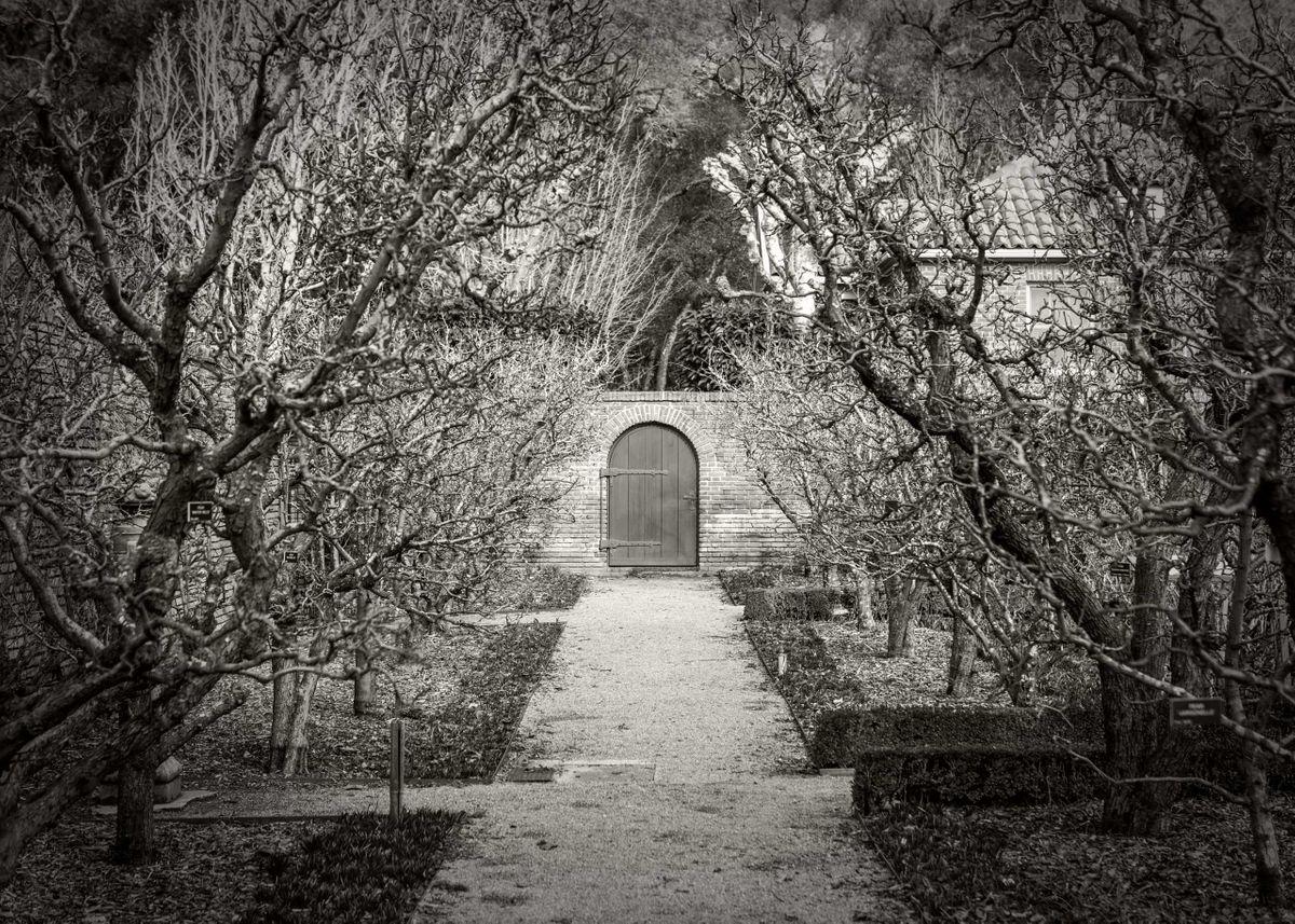 Delgado_Filoli-Garden_04.jpg