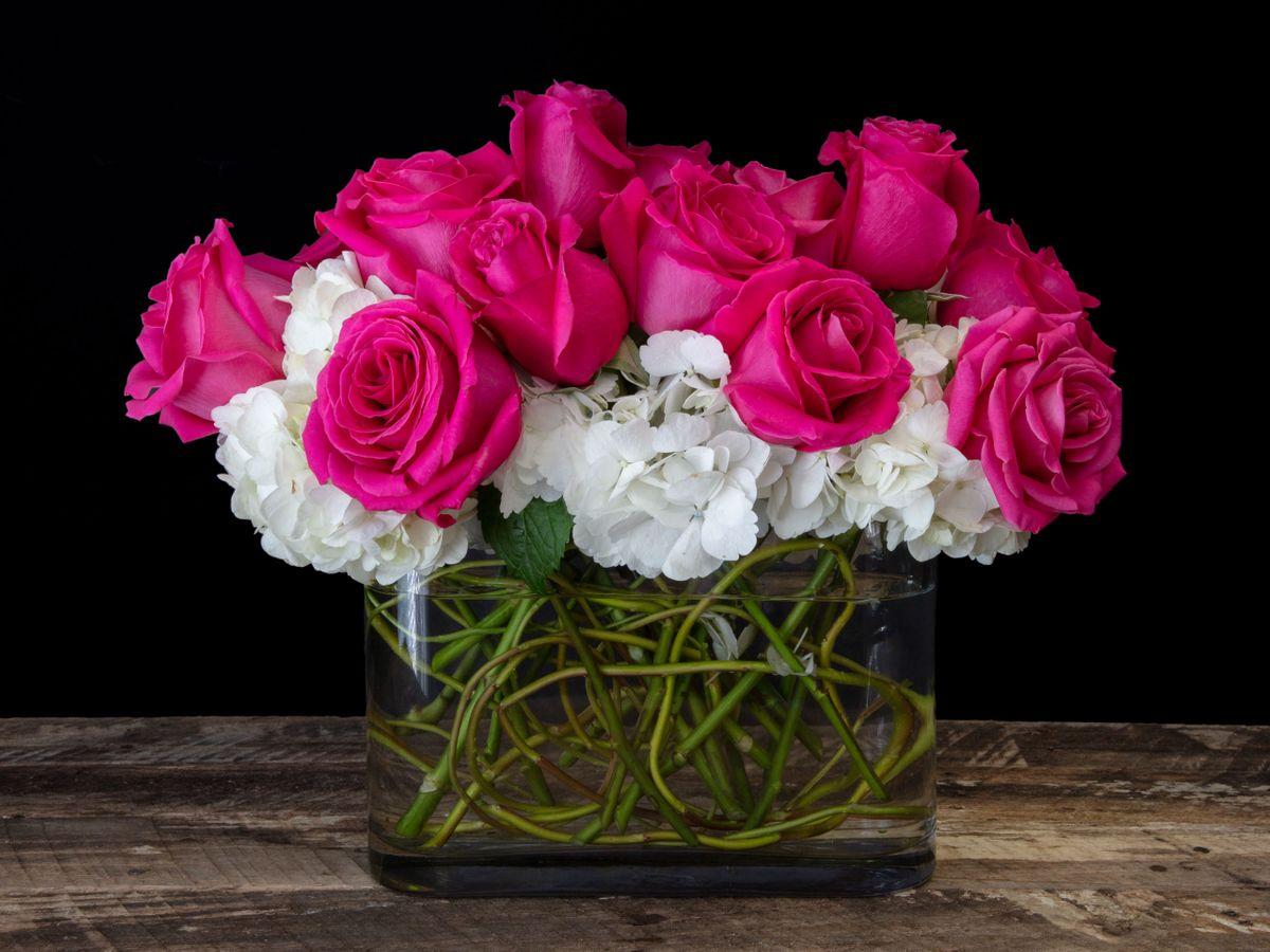 Roses_LB_06.jpg