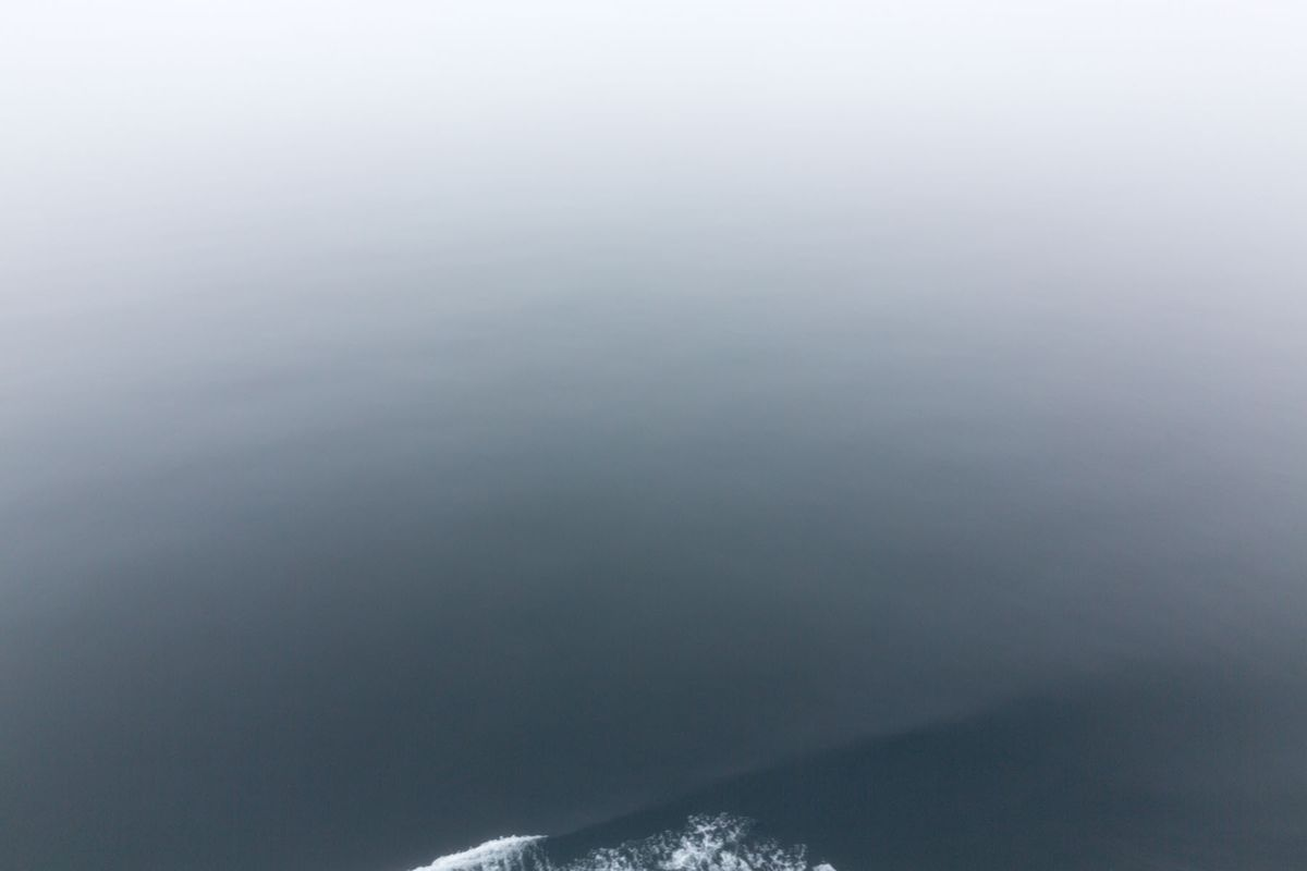 Gray Water, Fog