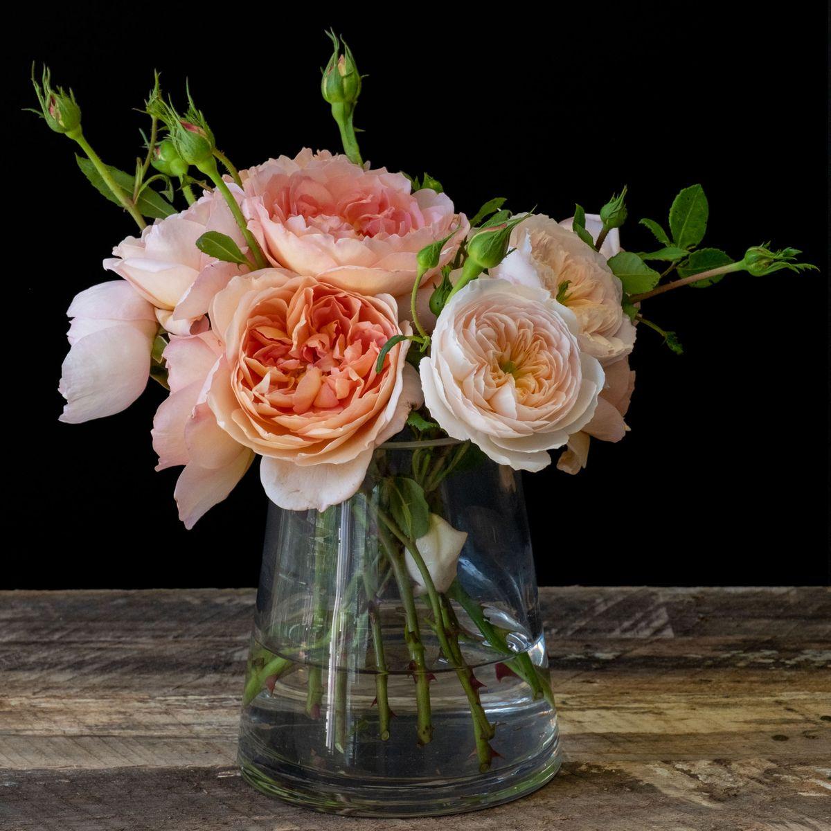 Roses_LB_03.jpg