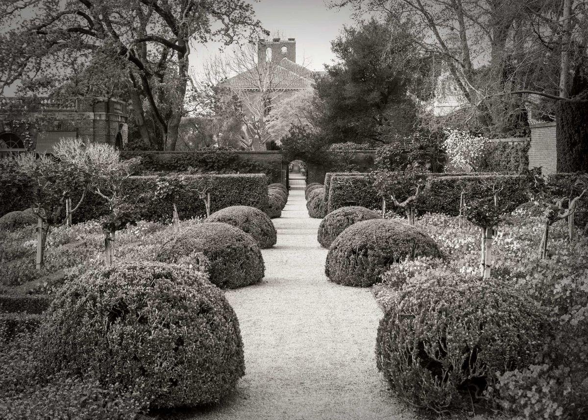 Delgado_Filoli-Garden_02.jpg