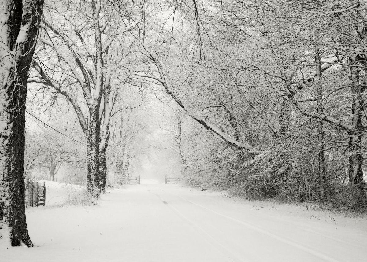 Winter_5x7_07.jpg