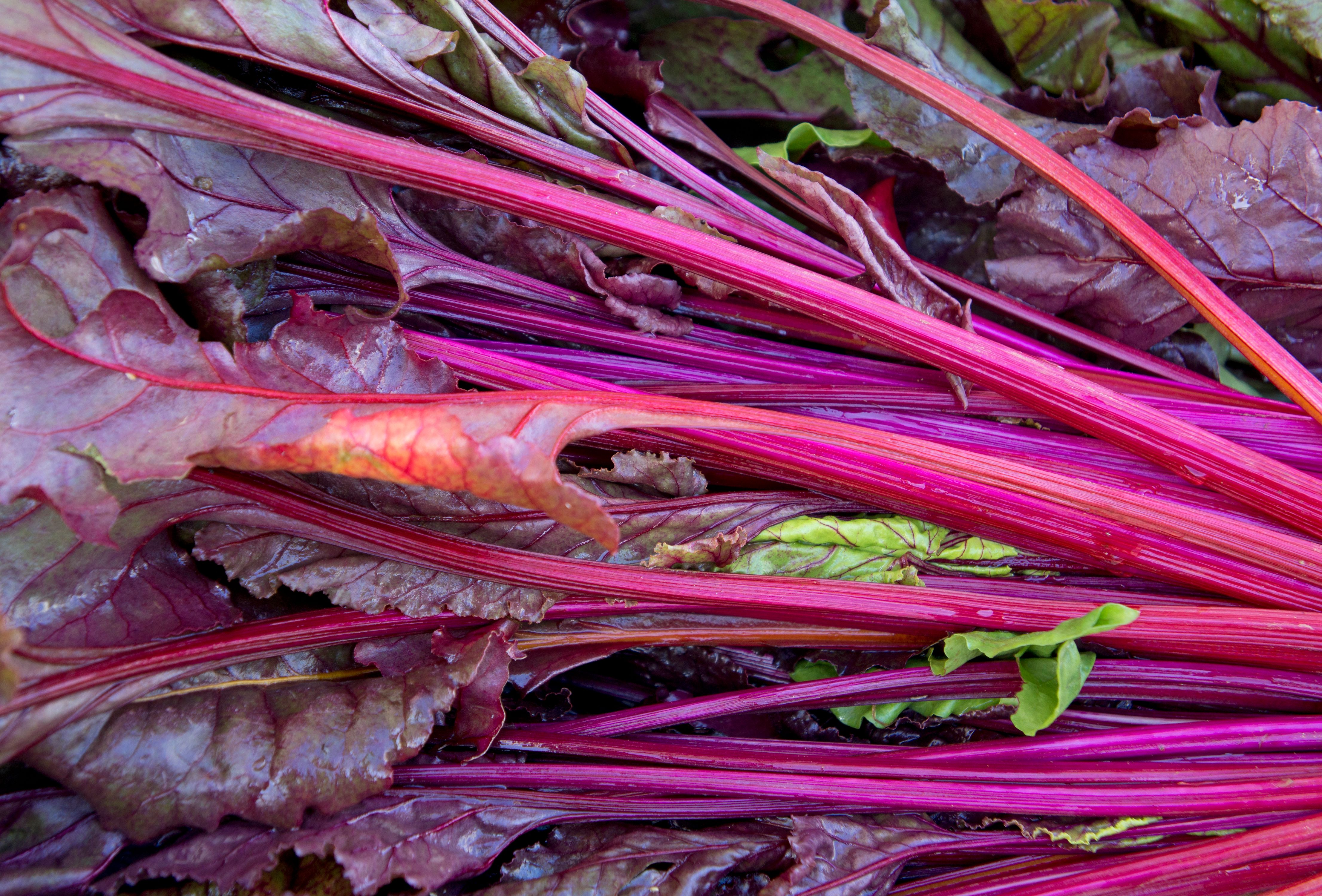 Chard Stems and Leaves