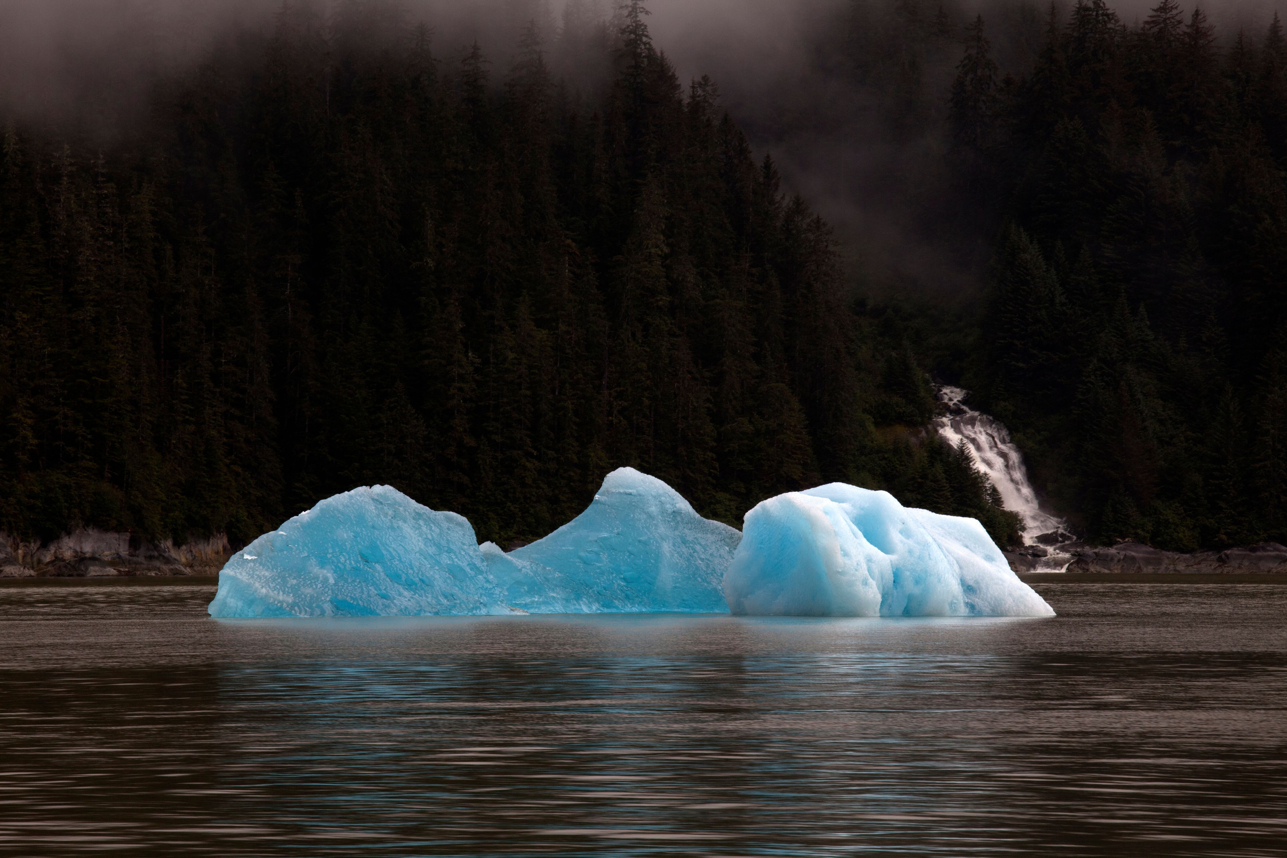 Blue Gems of Ice Float in the Tide