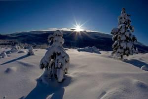 20160423-SierraSeasons_Winter.jpg