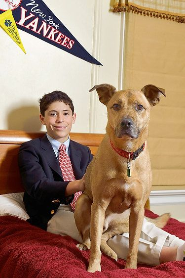 Greenwich  Bar Mitzvah Portrait With Dog