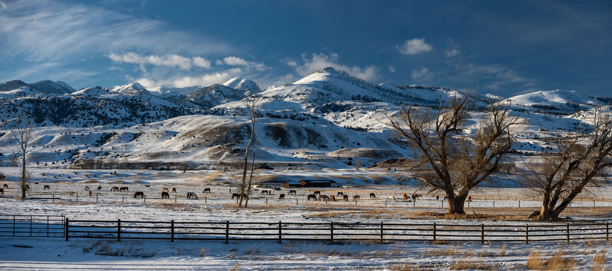 Winter landscape in the Rockies