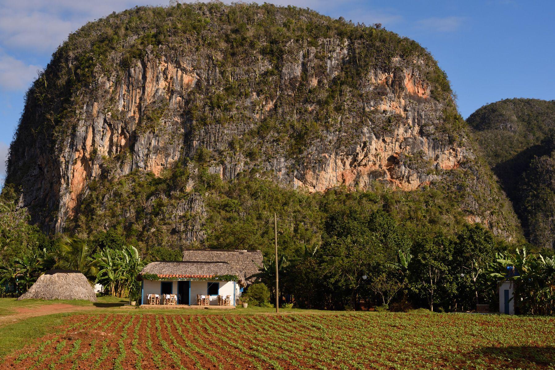 Vinales Farm Landscape