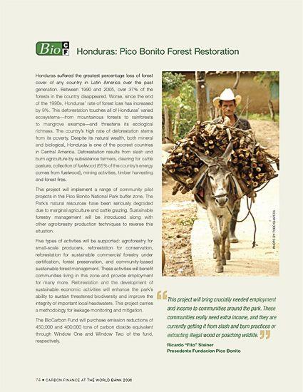 Rainforest man with donkey hauling firewood