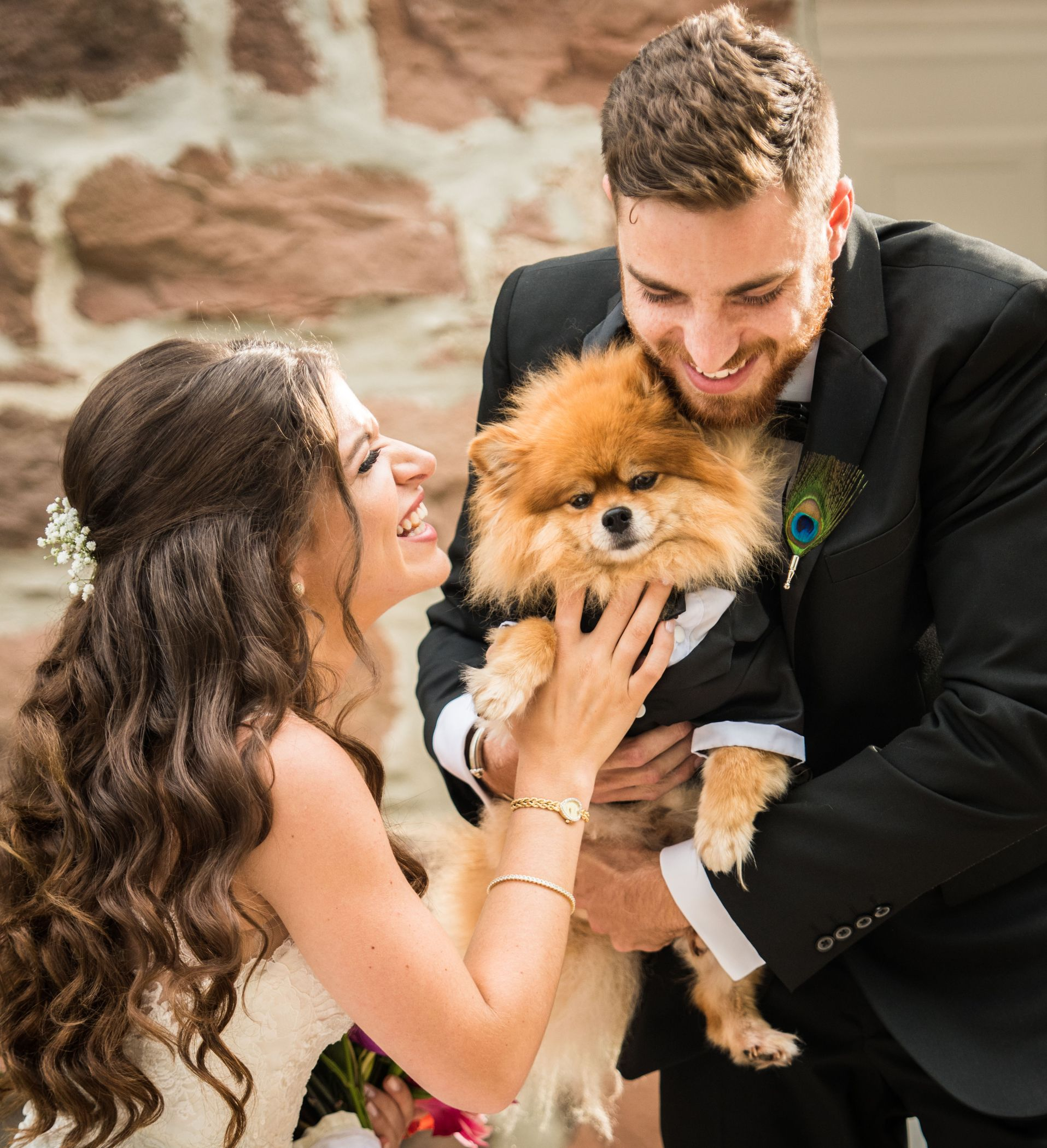 Wedding Puppy Love