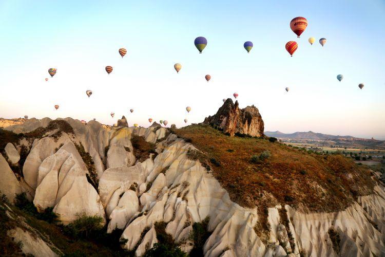 1turkey_balloons2.jpg