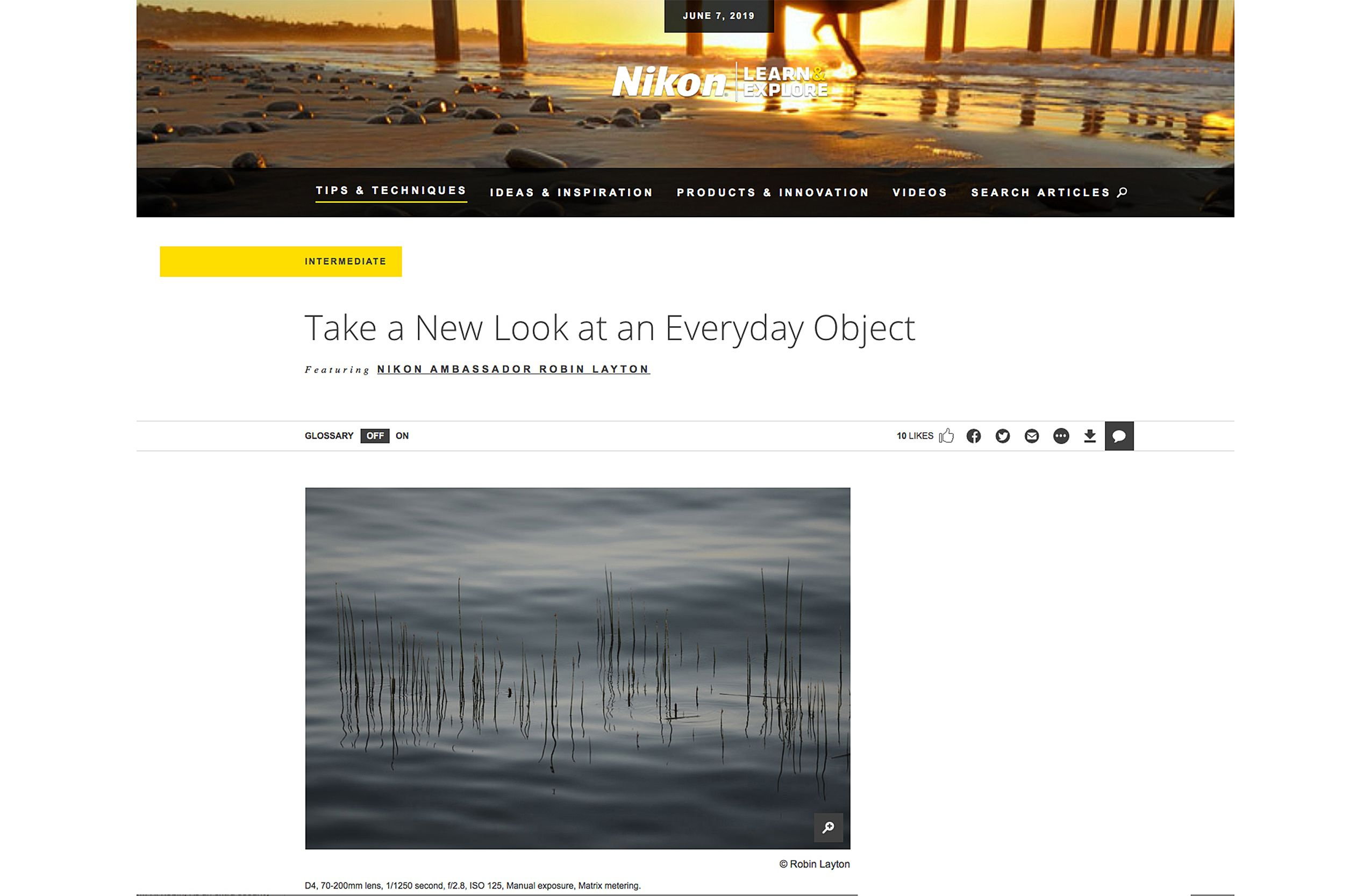 Nikon Article on everyday articl.jpg