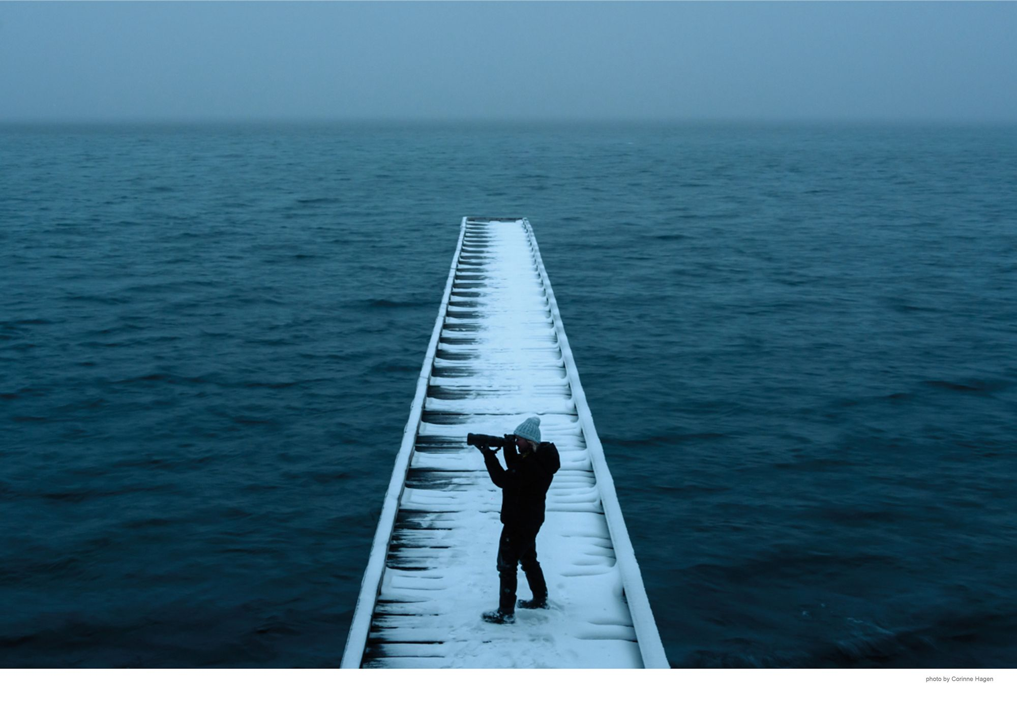 robin on snowy pier for lake book website with photo credit.jpg