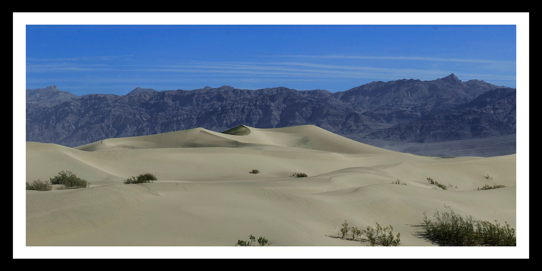 Mesquite Dunes • Two