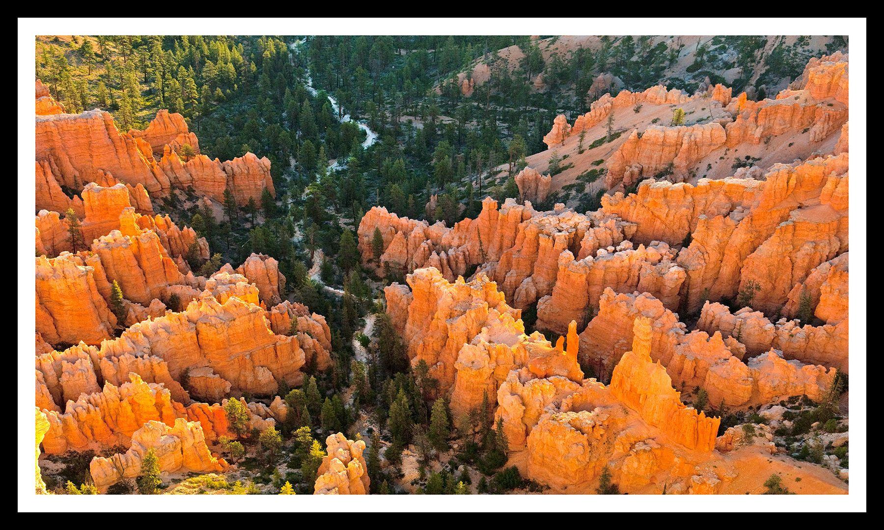 Bryce Canyon Morning