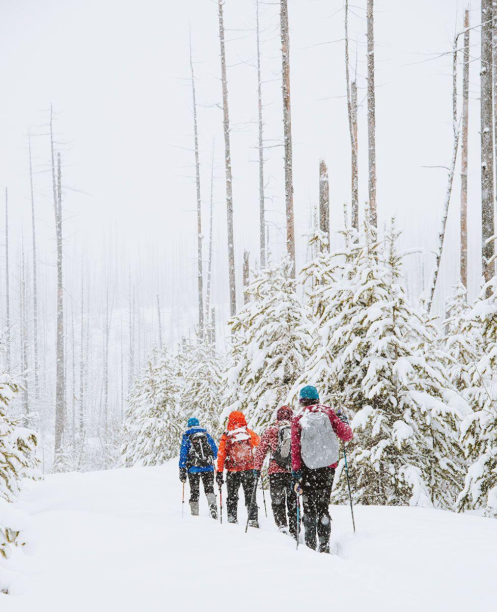 Ladies Ski