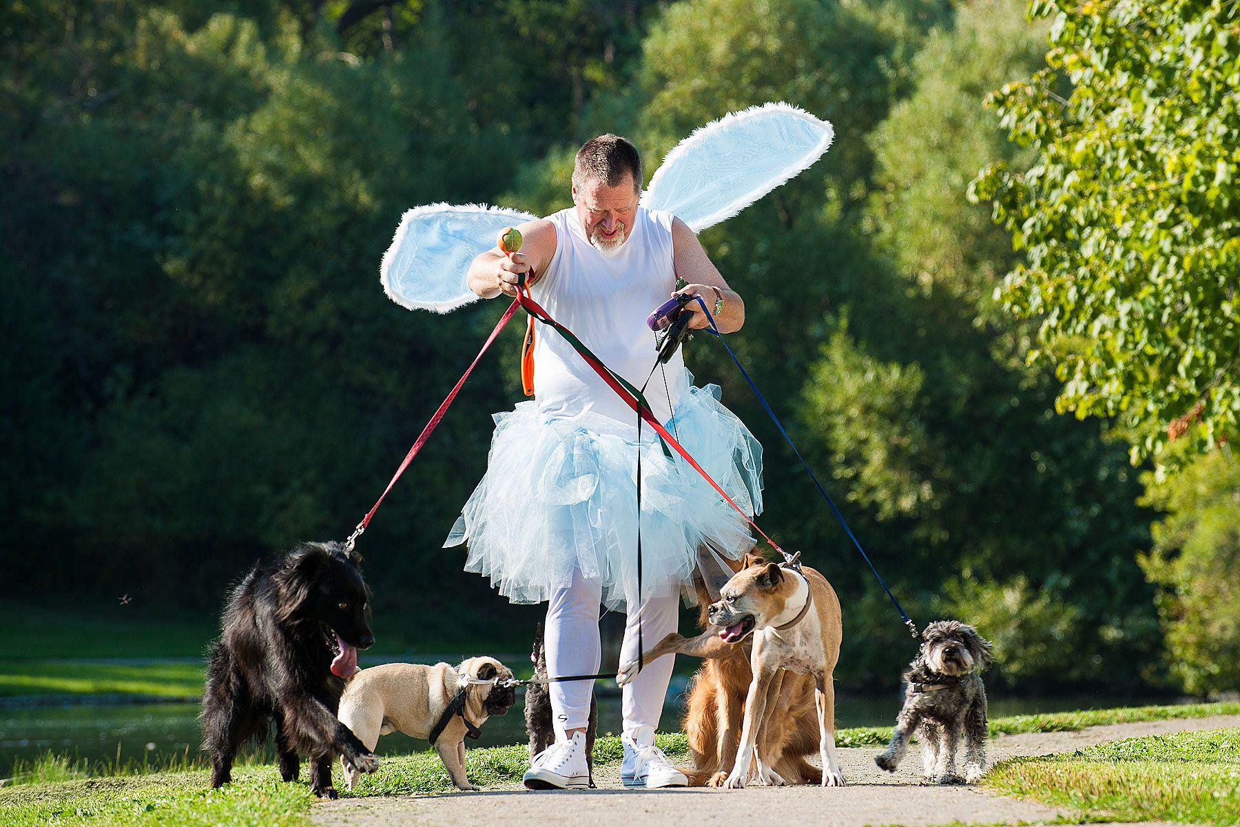 The Tooth Fairy picks up extra cash walking dogs.