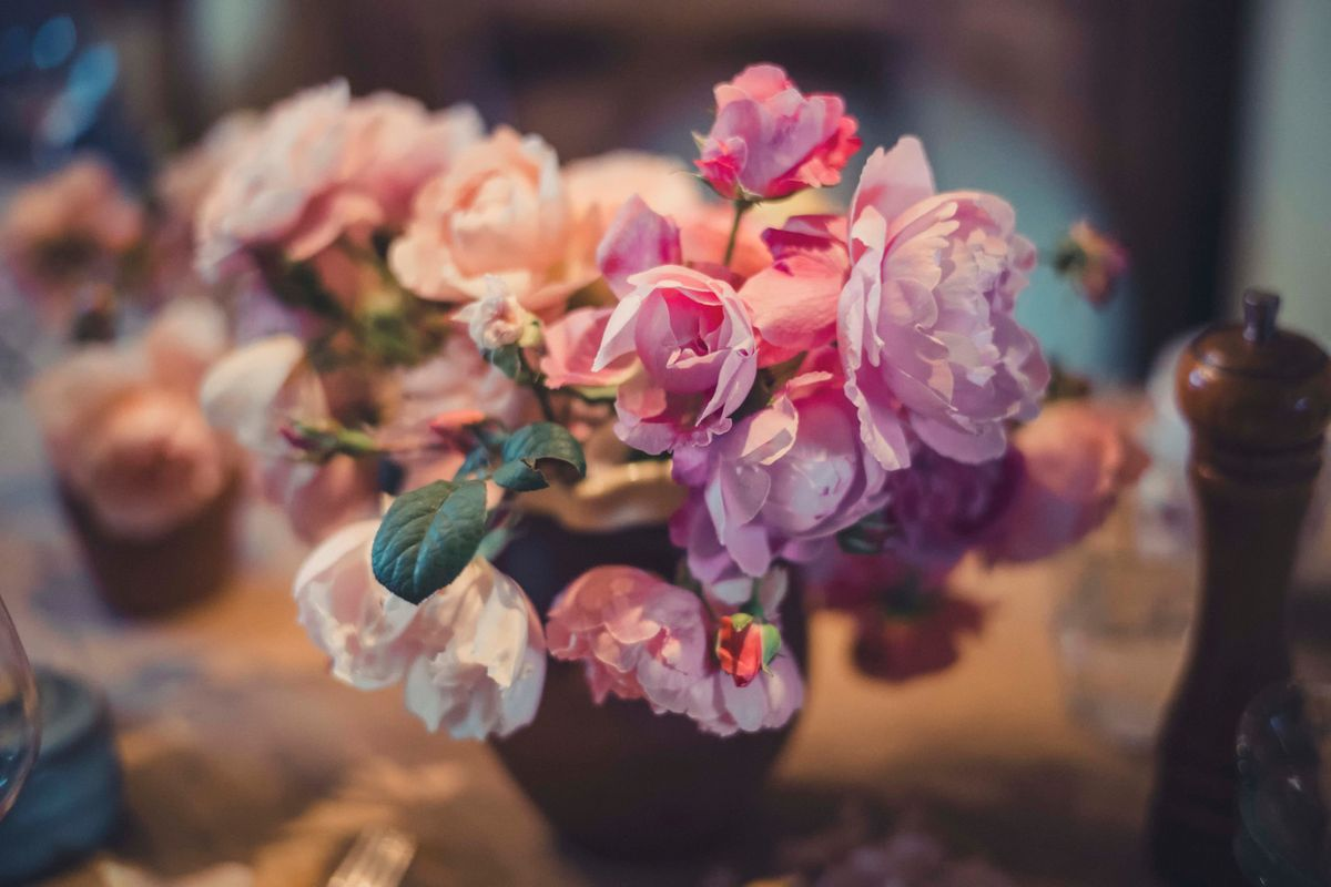 streele roses1.jpg
