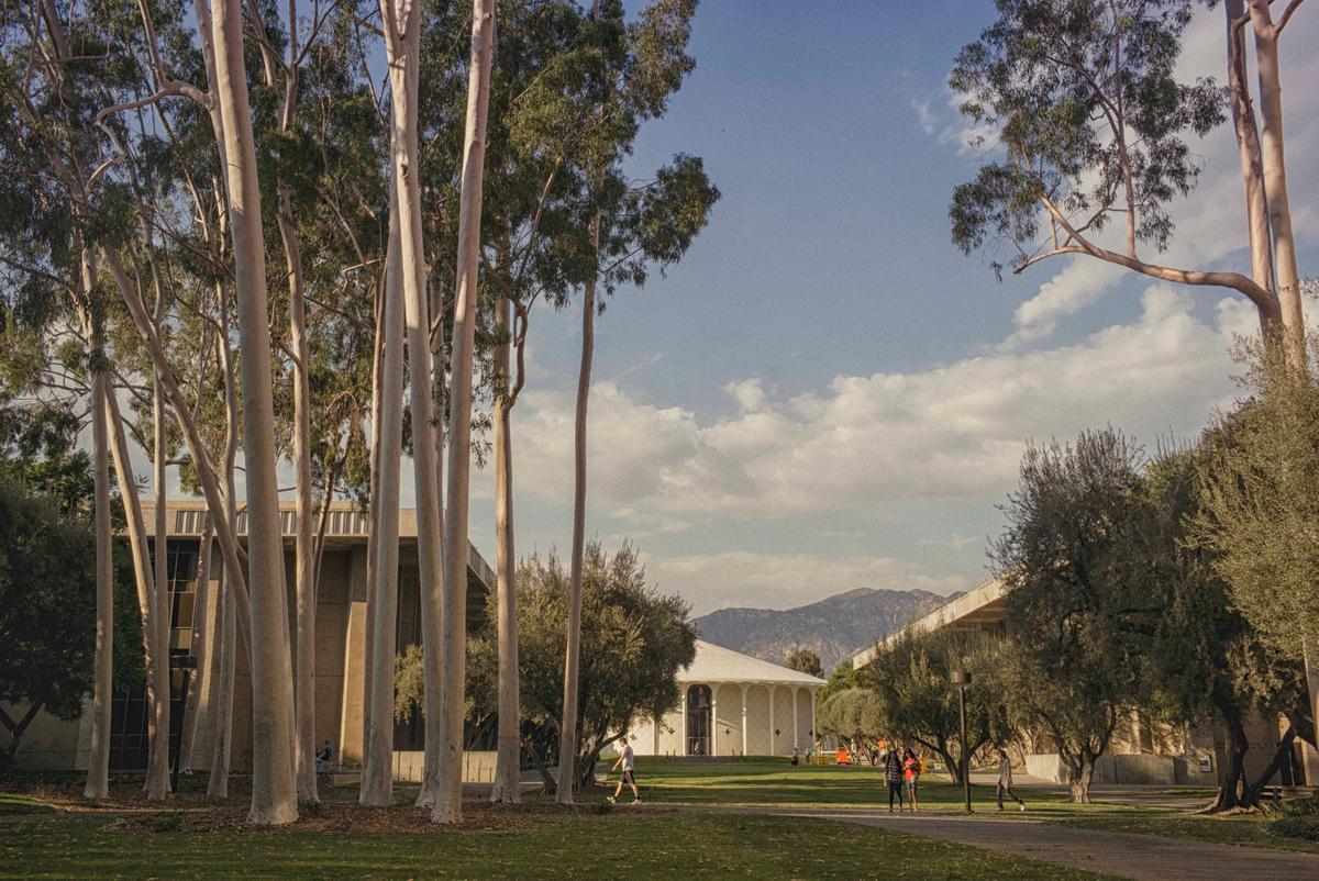 caltech1.jpg