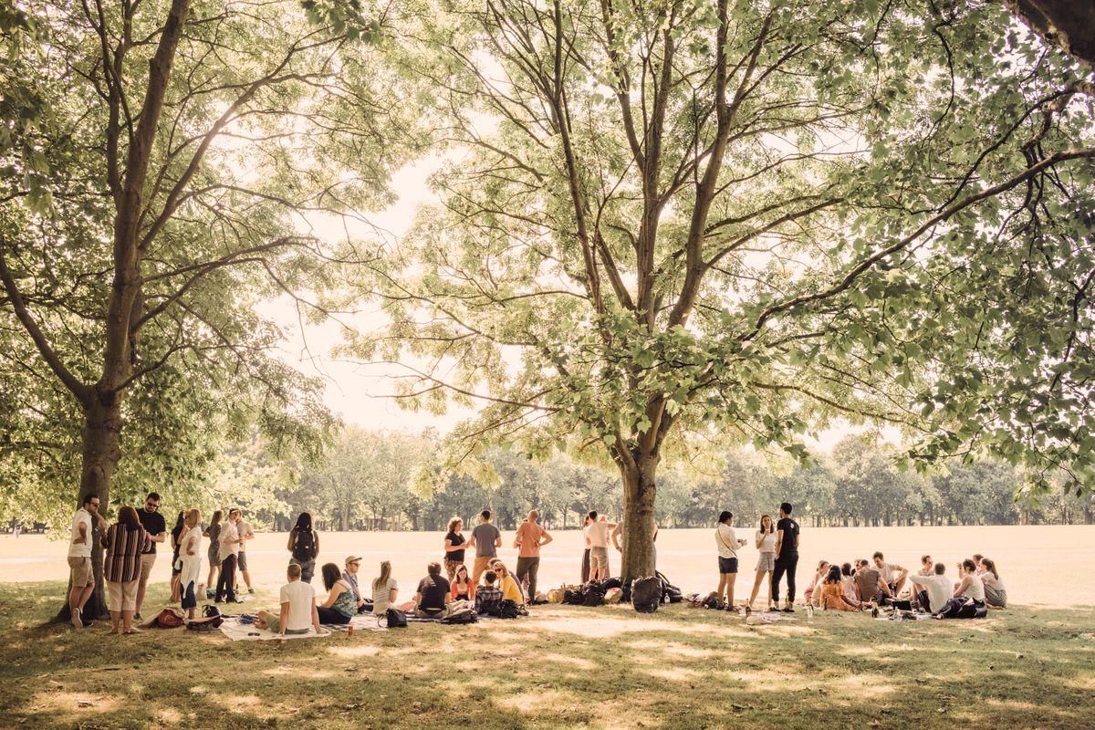 regent's park heat1.jpg