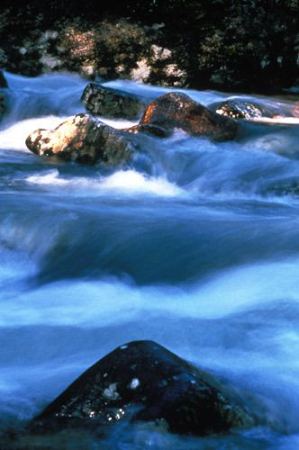 1Montana_River